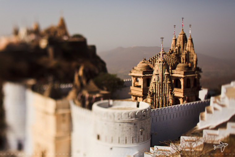 photo of the day // palitana