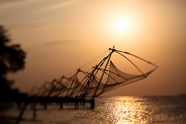 photo of the day // fort kochi