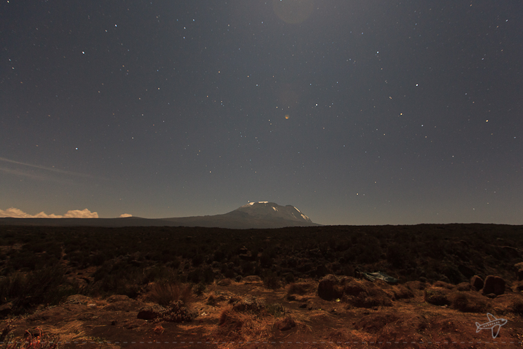 kili at night